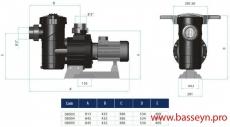 Насос с префильтром Astral Maxim 66,0 м3/ч 4,5 л.с. 380В